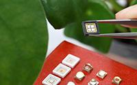 LG Innotek进军园艺LED市场,推30种LED封装