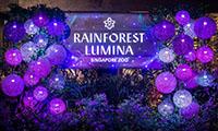 多媒体沉浸式体验,打造热带雨林奇妙夜!