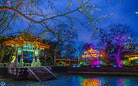 花间灯下,太湖鼋头渚夜晚赏樱原来可以这么美