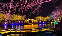 2019年广东文化和旅游重点工作