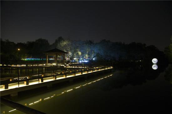 杭州灯光小品秀1.jpg